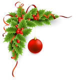 Vector Christmas holly with berries Stock Images