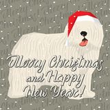 Vector Dogs Collection. Vector Christmas polygon dog collection. Dog in Christmas Santa hat. Komondor vector illustration