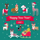 Vector Christmas Set. Dogs in winter clothes. Christmas illustration. Congratulations on the sign. Royalty Free Stock Photography