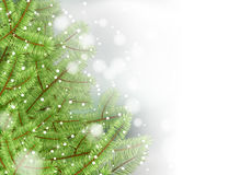 Vector christmas tree on white background. Royalty Free Stock Image
