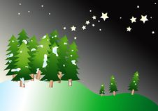 Vector Christmas Trees At Night Stock Photos