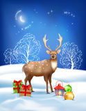 Vector Christmas Winter Night Background Stock Photography