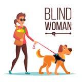 Vector ciego de la mujer Person With Pet Dog Companion Hembra de las persianas en vidrios oscuros y caminar del perro guía histor ilustración del vector