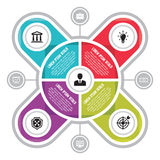 Vector circle business concepts with icons Royalty Free Stock Photography