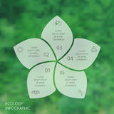 Vector circle eco infographic. Ecology template for diagram, graph, presentation and chart. Environmental care concept with 5 options, parts, steps or Stock Photo