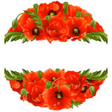 Vector circle frame with red poppies Stock Photography