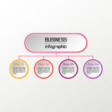 Vector circle infographic. Business diagrams, presentations and charts. Background. Vector circle infographic. Business diagrams, presentations and charts Stock Photos