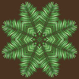 Vector circle of palm leaf. Stock Photo