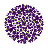 Vector of Circle Purple Flower. With leaf Stock Photos