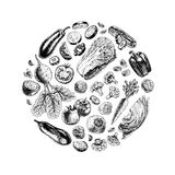 Vector circle of vegetables Royalty Free Stock Photo