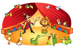 Vector circus scene with many animals Royalty Free Stock Photography