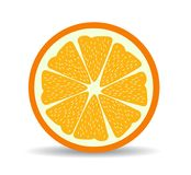 Vector citrus slices illustration Royalty Free Stock Images