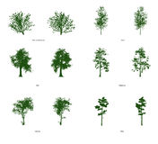 6 Clip Art Trees. Collection of 6 different clipart trees Stock Images