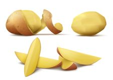 Vector clipart with raw peeled potato and slices vector illustration