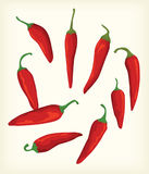 Vector and cliparts red chili Stock Photo