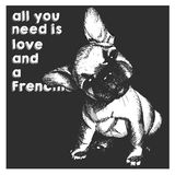 Vector close up portrait of french bulldog puppy, isolated on black square background. All you need is love and a dog.