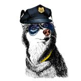 Vector close up portrait of police dog.  Royalty Free Stock Photography