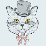 Vector closeup portrait of the British cat hipster stock illustration