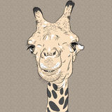 Vector closeup portrait of funny giraffe Royalty Free Stock Photos