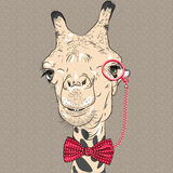 Vector closeup portrait of funny giraffe hipster. Sketch closeup portrait of funny giraffe hipster in red eyeglasses and bowtie Royalty Free Stock Photography