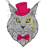 Vector closeup portrait of the Maine Coon cat hipster Royalty Free Stock Image