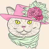 Vector Closeup Portrait Of The British Cat Hipster Royalty Free Stock Photo
