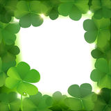 Vector clover leafs border. With space for text Royalty Free Stock Photo