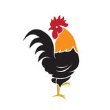 Vector of a cock design on white background. Stock Photos