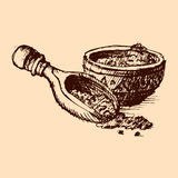 Vector cocoa powder with beans hand drawn sketch illustration. Royalty Free Stock Photos