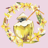 Vector coconut hand drawn sketch with plumeria flowers. Watercolor vector tropical food illustration.  on white. Background Stock Images