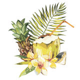 Vector coconut hand drawn sketch with plumeria and Pineapple. Watercolor vector tropical food illustration. Isolated on Royalty Free Stock Images