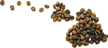 Vector Coffee Beans Stock Photography