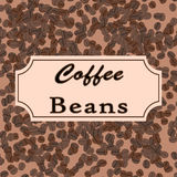 Vector coffee beans. Coffee design for shop or cafe Stock Image
