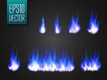 Vector cold fire flames isolated on transparent background. Special light effect for your design Royalty Free Stock Image