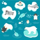 Vector a coleção de animais polares no estilo liso Fotos de Stock