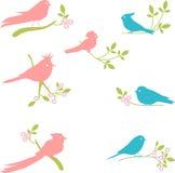 Vector Collection of Bird Silhouettes Royalty Free Stock Photos