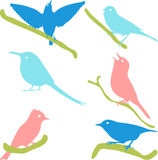 Vector Collection of Bird Silhouettes, colored silhouettes. Royalty Free Stock Image