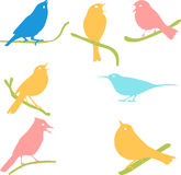 Vector Collection of Bird Silhouettes, colored silhouettes. Stock Photo