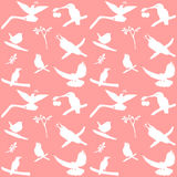 Vector Collection of Bird Silhouettes on a pink background Stock Photos