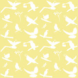 Vector Collection of Bird Silhouettes Stock Images