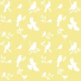 Vector Collection of Bird Silhouettes Stock Photos