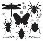 Vector Collection of Black Hand Drawn Insect Shapes Stock Image