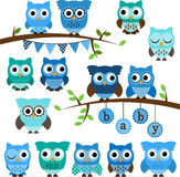 Vector Collection of Boy Baby Shower Themed Owls Stock Photos