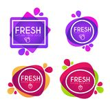Vector collection of bright and shine  stickers, emblems and ban. Ners for berry  fresh juice Royalty Free Stock Images