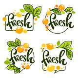 Vector collection of bright stickers, emblems logo and labels stock illustration