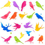 Vector Collection of Bright Watercolor Bird Silhouettes Stock Photos