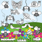 Vector Collection of Bug and Insect Line Art Royalty Free Stock Images