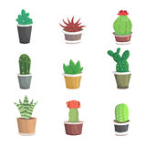 Vector collection of cactus. Cute  cacti. Vector collection of cactus, illustration Royalty Free Stock Images