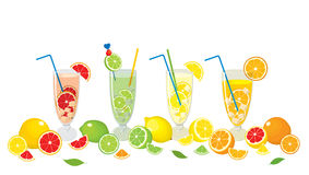 Vector collection of citrus products - orange, lemon, lime and grapefruit and Mojito cocktails, isolated on white background. Stock Photos
