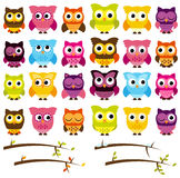 Vector Collection of Cute and Colorful Owls royalty free illustration